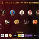 Biggy 237 Eviction Voting Poll Week 6