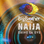 Meaning Of Big Brother Naija WildCards – Their Role In The Game